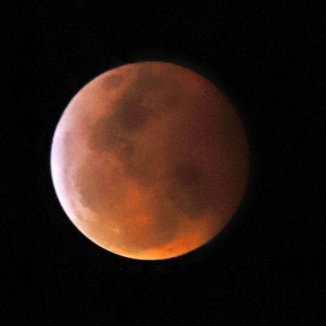 Super Blood Wold Moon Jan 21 2019 T.Cook.jpg